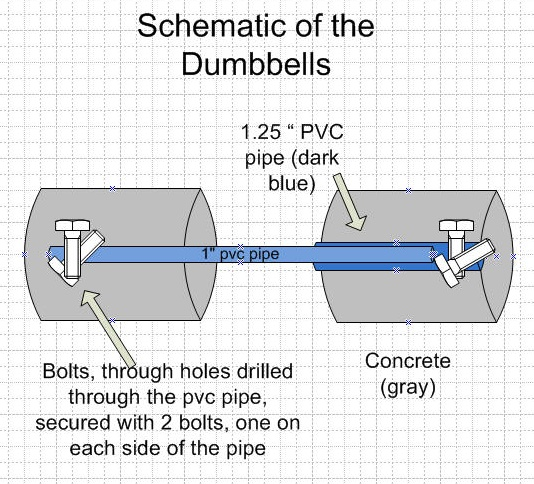 Schematic of the dumbbells